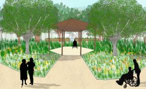 Injoanna Lai_Landscape Architecture - MA_2019_Restoring Woodlands for Health and Well-Being _1.jpg