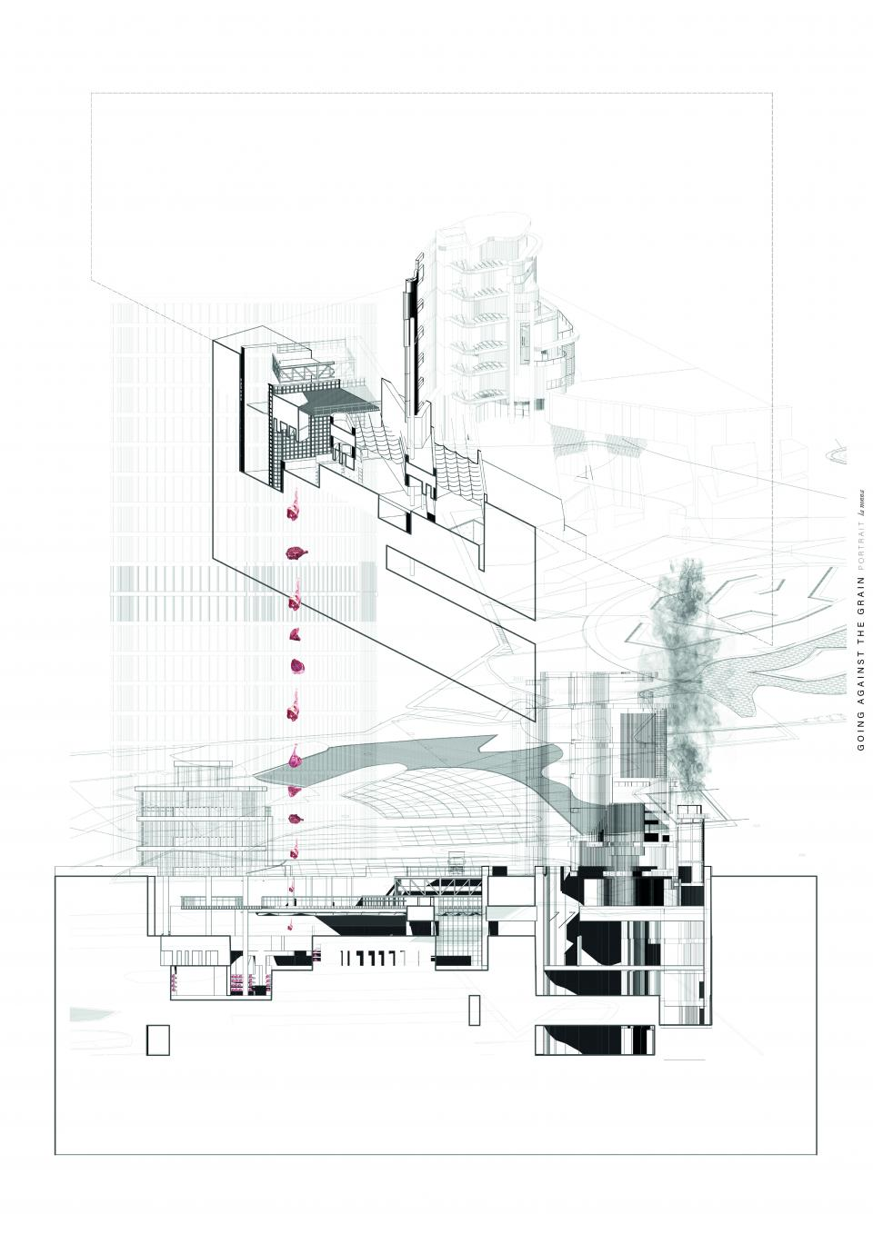 Katie Hackett and Agata Woloszyn_Architecture - MArch_2020_Going Against the Grain_10.jpg